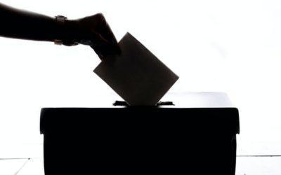 Toghcháin 2013 – Daltaí na Gaeilge Elections